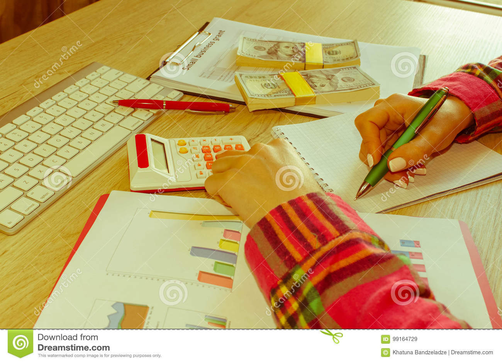 Młoda kobieta pracuje w domu, siedzący przy biurkiem, używać komputer Biznesowa dotacja i finanse pojęcie