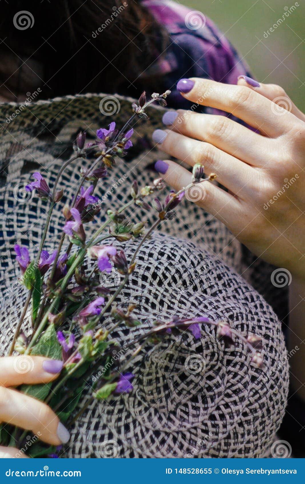 Młoda kobieta trzyma słomianego kapelusz i bukiet lila kwitnąca lawenda Fio?kowy nastr?j