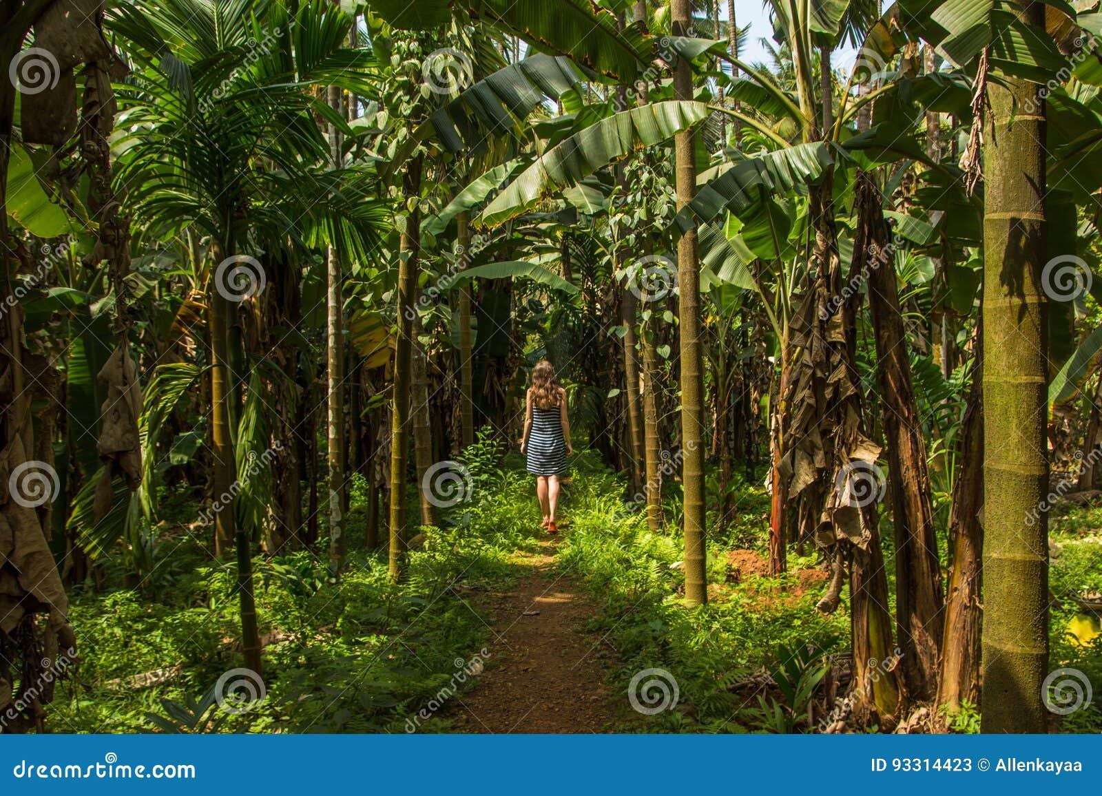 Młoda kobieta w dżungli w tropikalnej pikantności plantaci, Goa, Ind