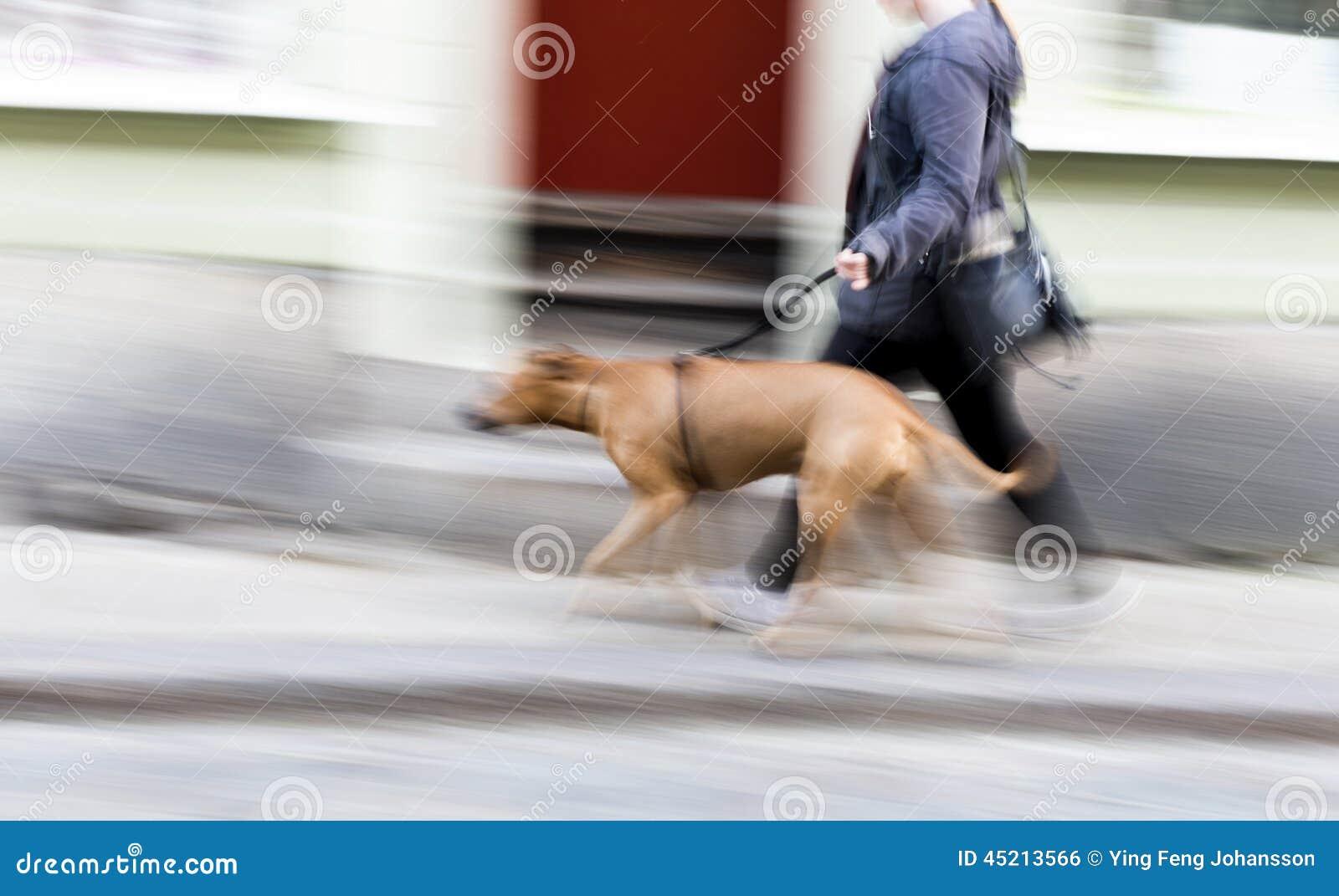 Młoda kobieta z dużym psem