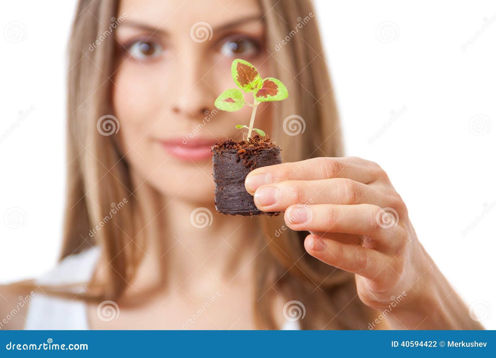 Młodej kobiety mienia roślina, coleus flanca