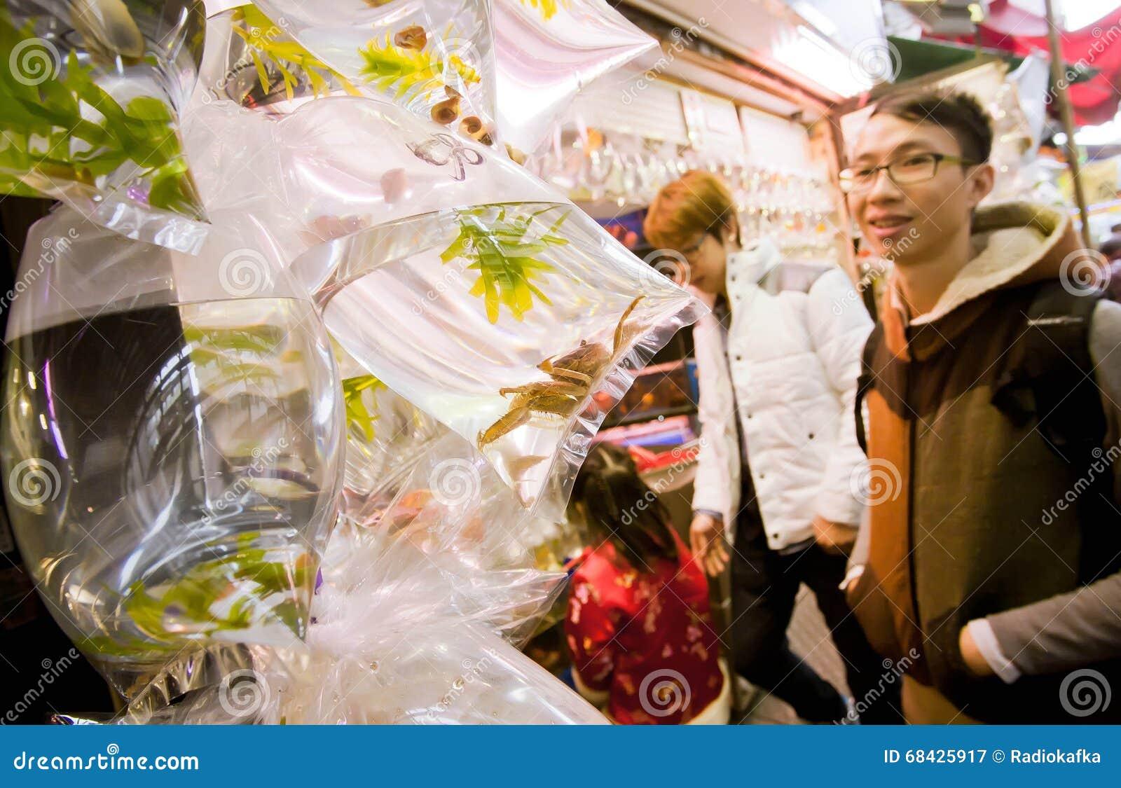 Młody człowiek patrzeje dla kraby w małych plastikowych workach