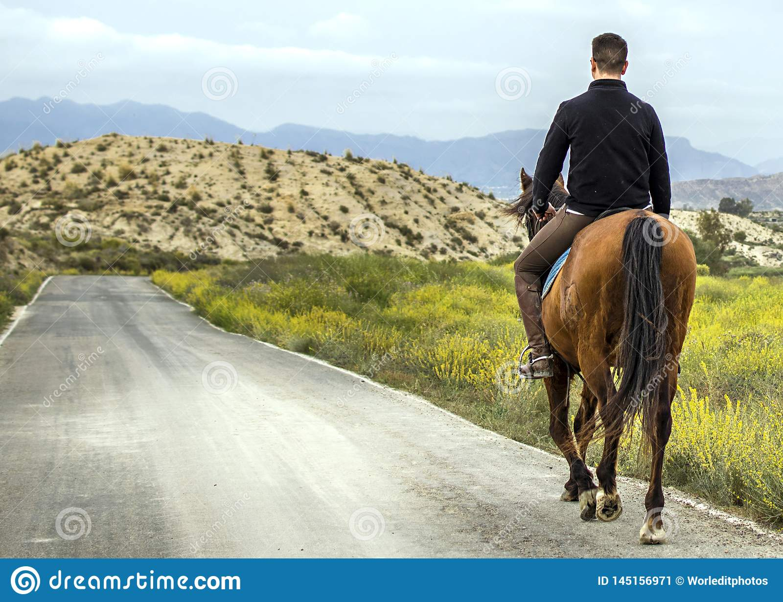 Młody jeździec jedzie jego konia na halnej drodze