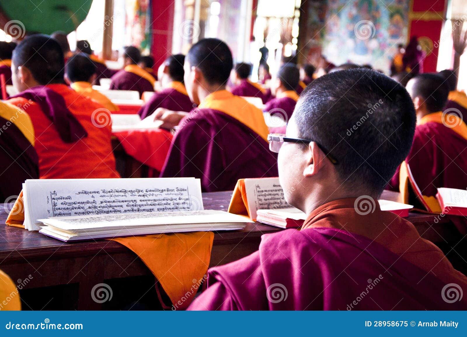 Młody michaelita czyta buddyjskiego religijnego tekst