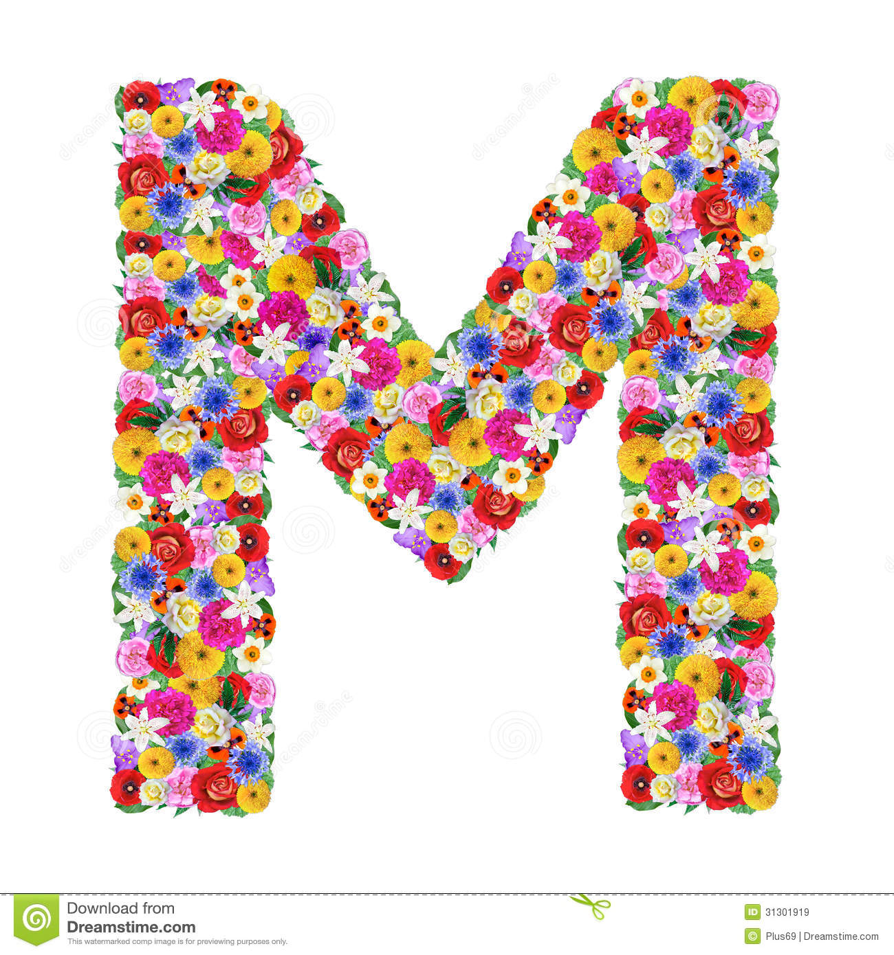 M Letter Of The Alphabet In Different Flowers Stock Image Image