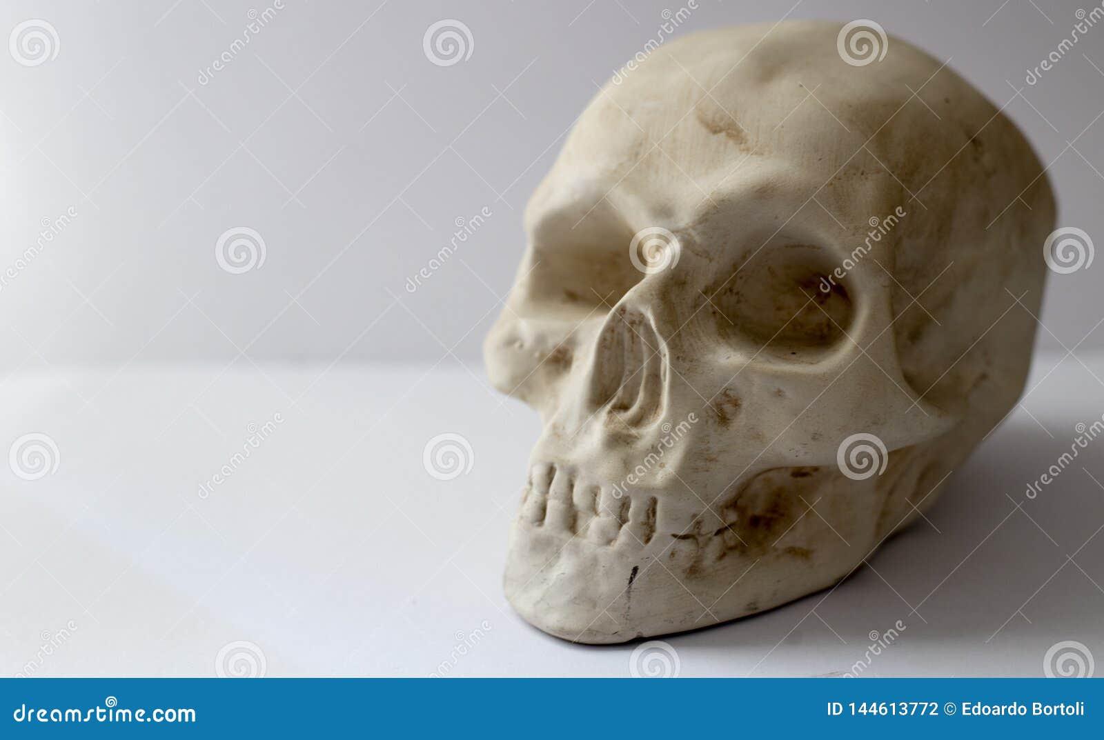 M?nsklig plastic skalle