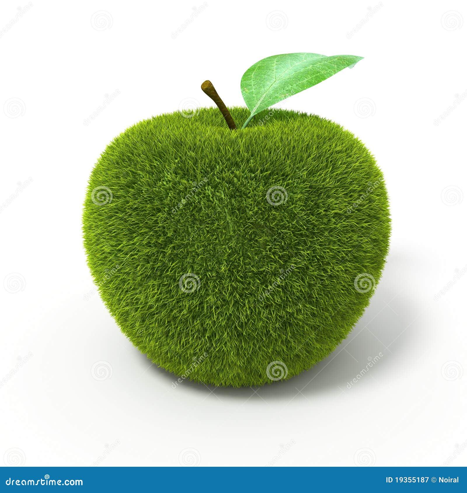 Maçã do verde de grama