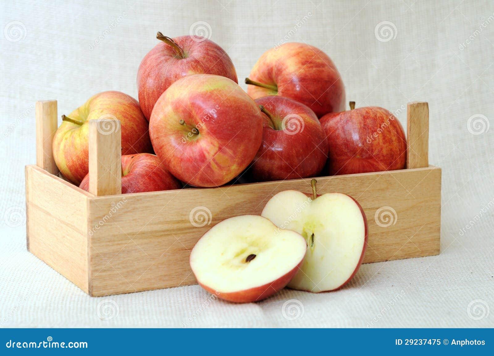 Download Maçãs da gala imagem de stock. Imagem de fresco, maçã - 29237475