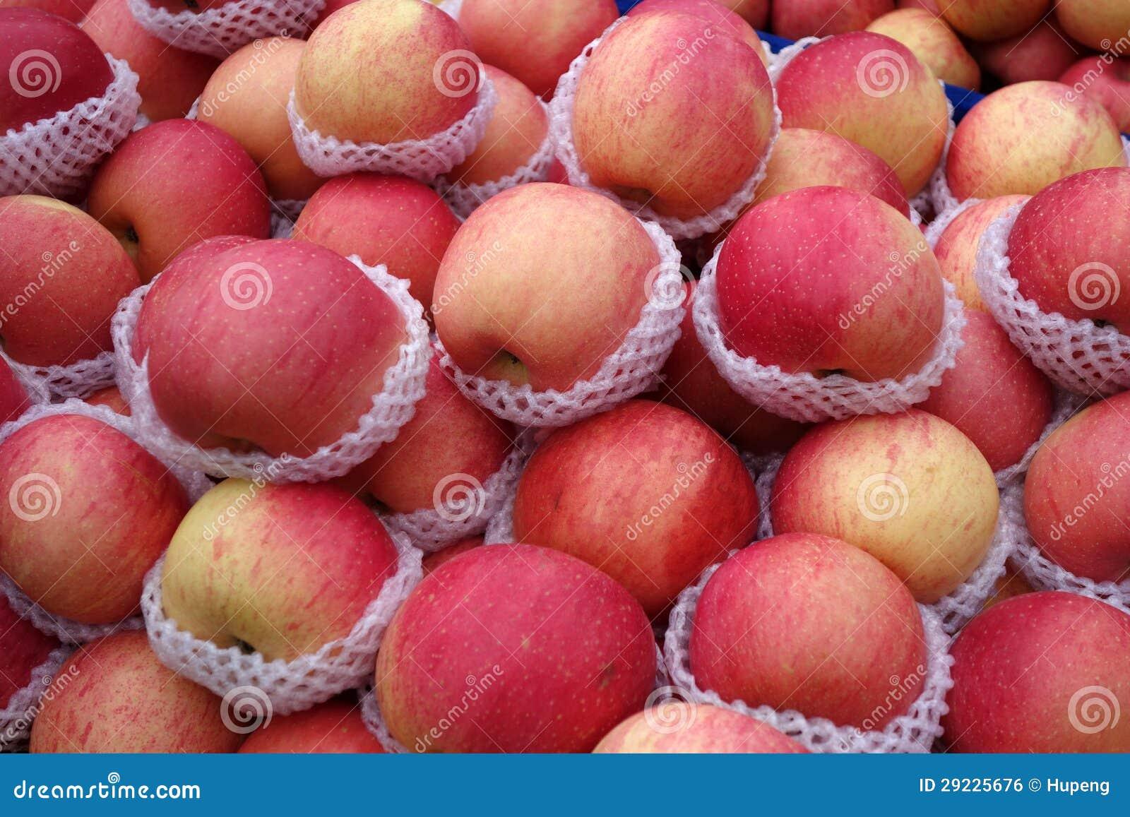 Download Maçãs frescas foto de stock. Imagem de gardener, maçãs - 29225676