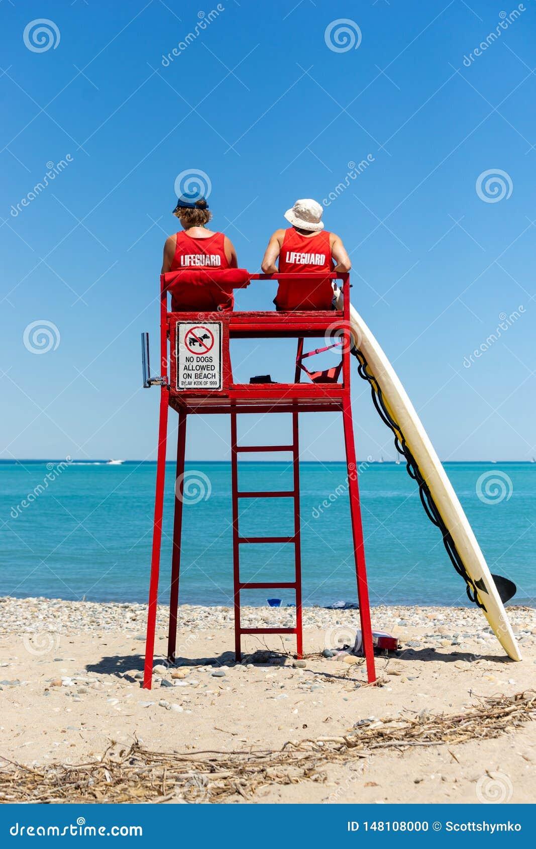 Maître nageurs observant la plage de la tour