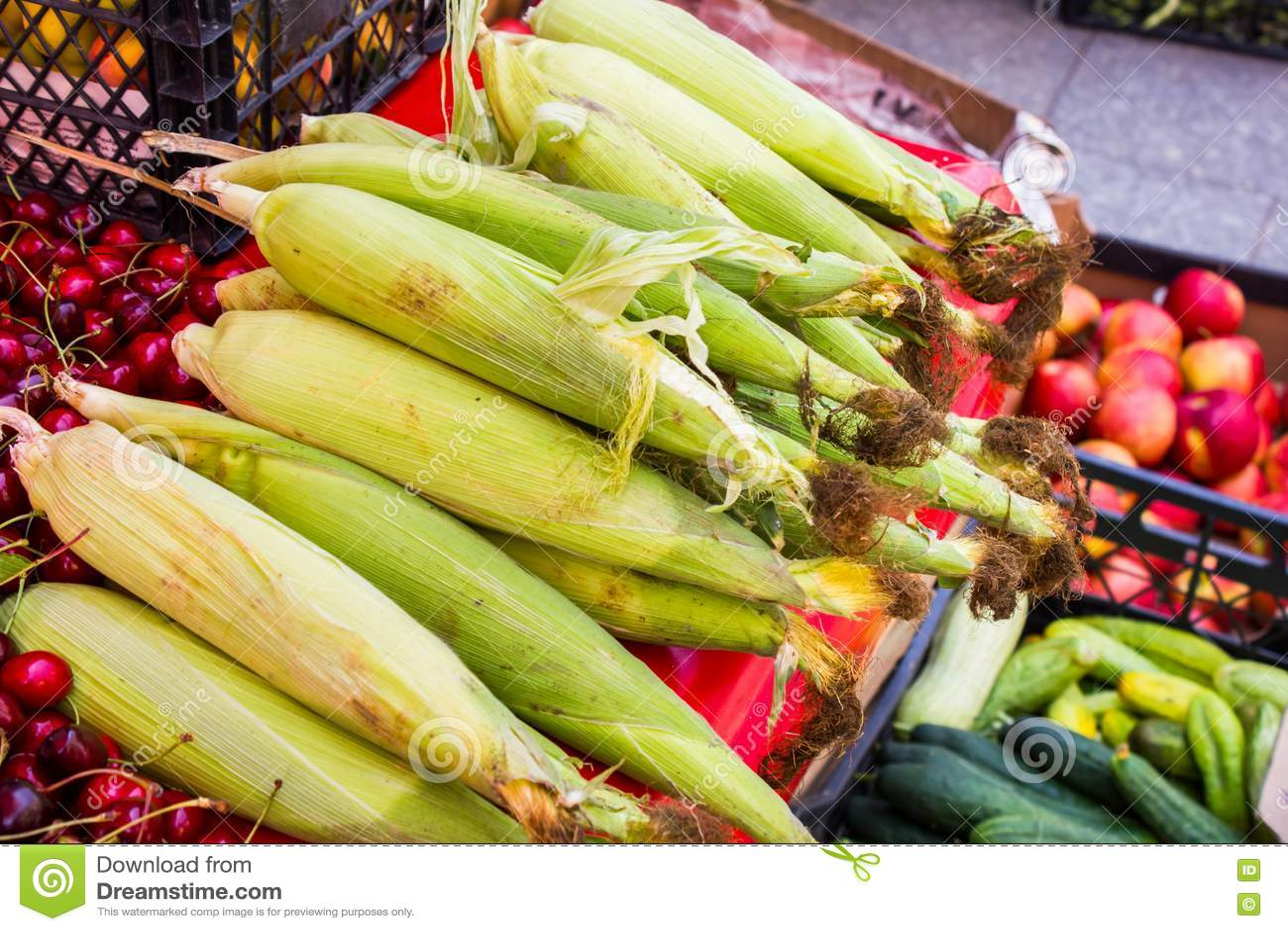 Maïs frais sur des épis