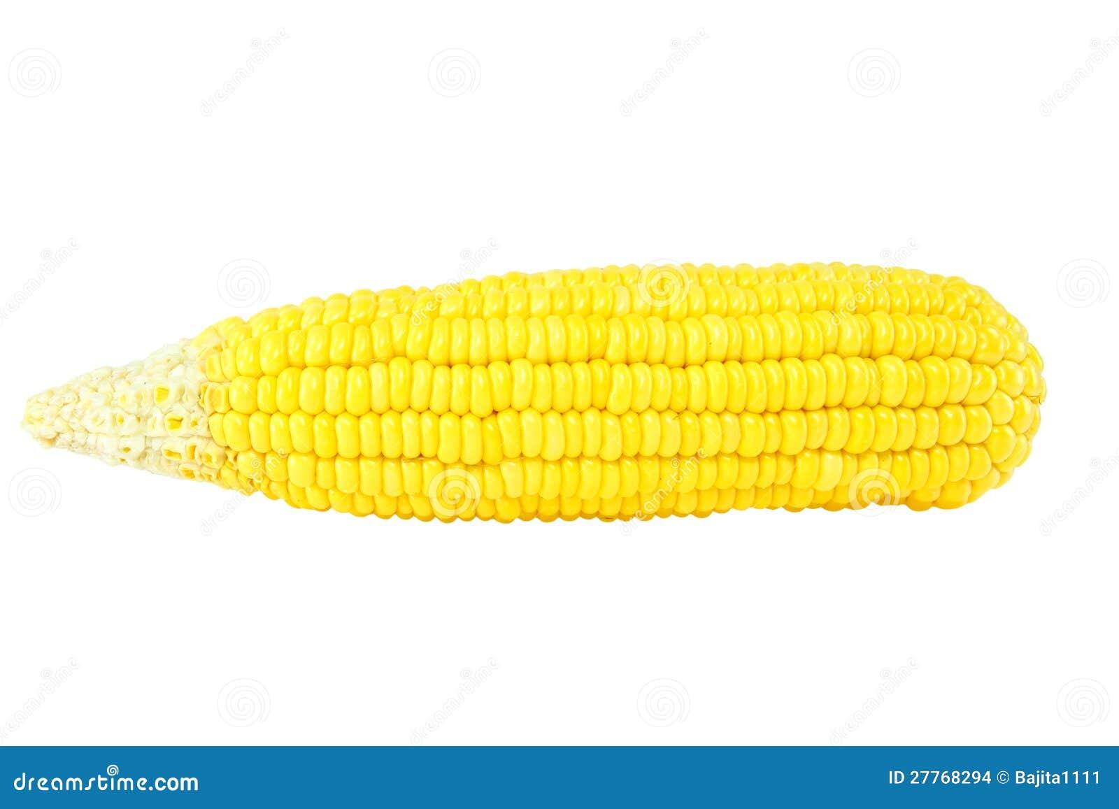 Maïs sur le fond blanc