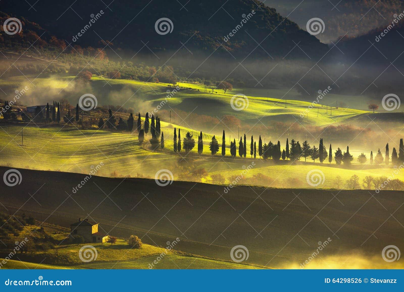Mañana de niebla de Toscana, tierras de labrantío y árboles de ciprés Italia