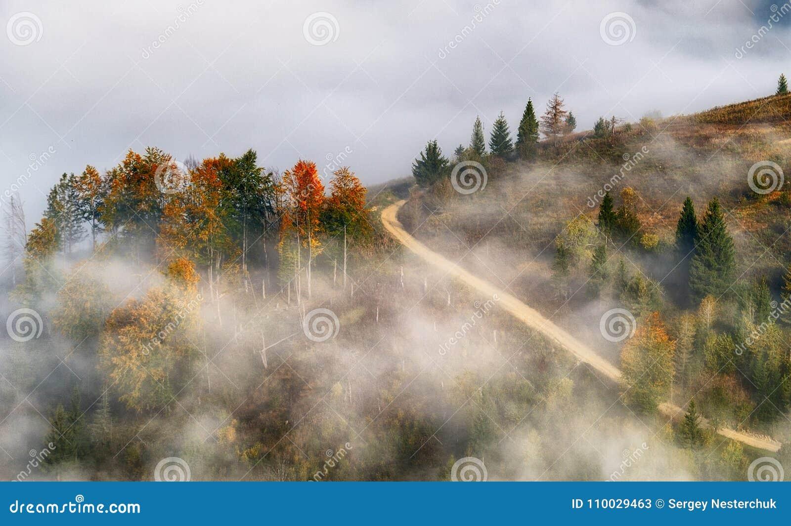 Mañana un amanecer pintoresco en las montañas cárpatas
