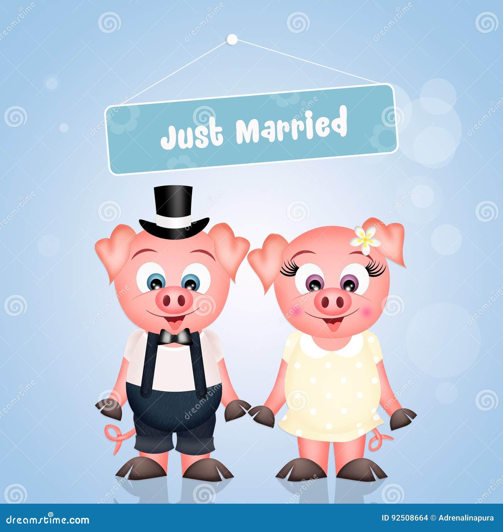 Małżeństwo świnie