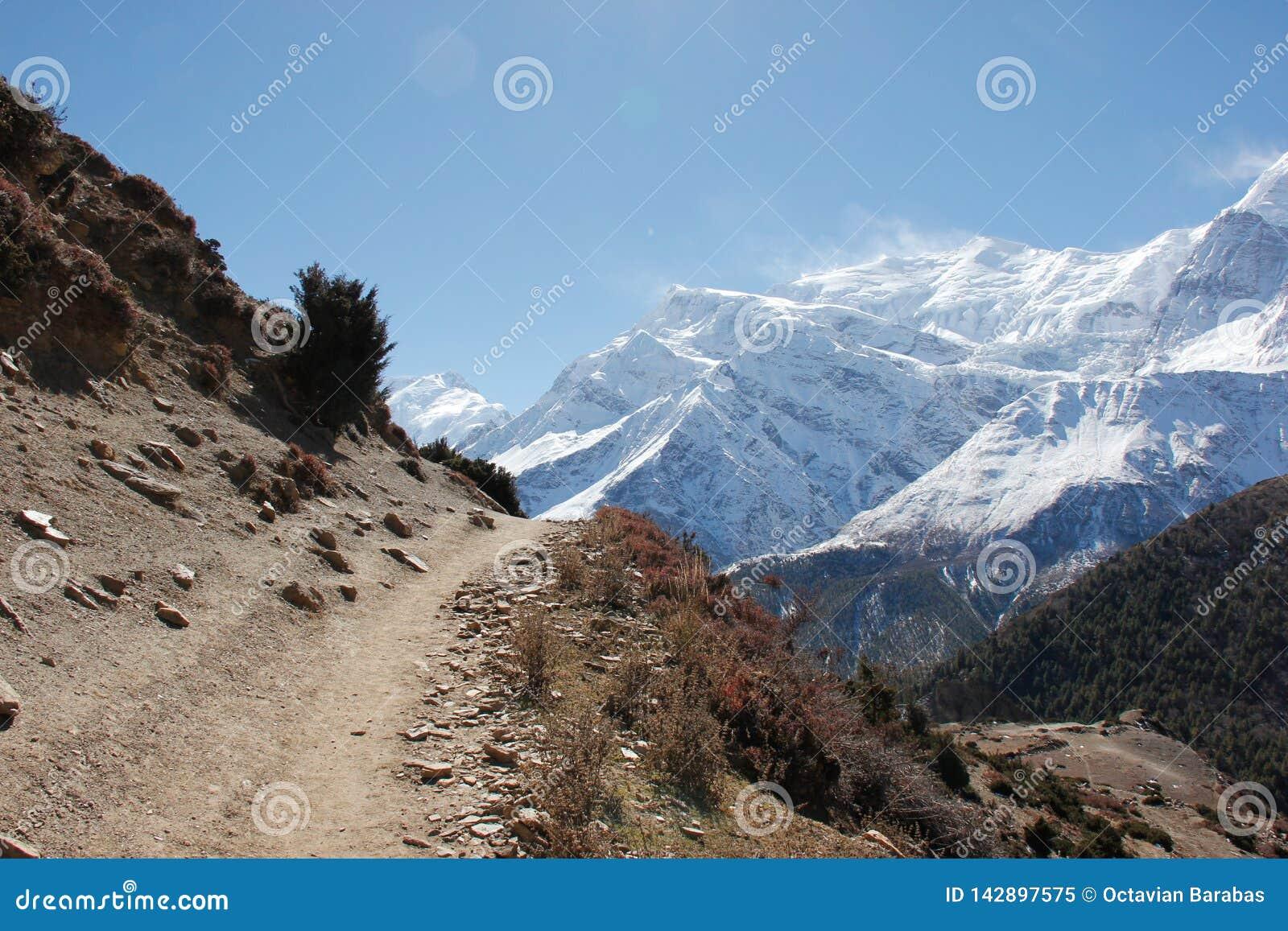 Mała ścieżka wysoka w himalajach