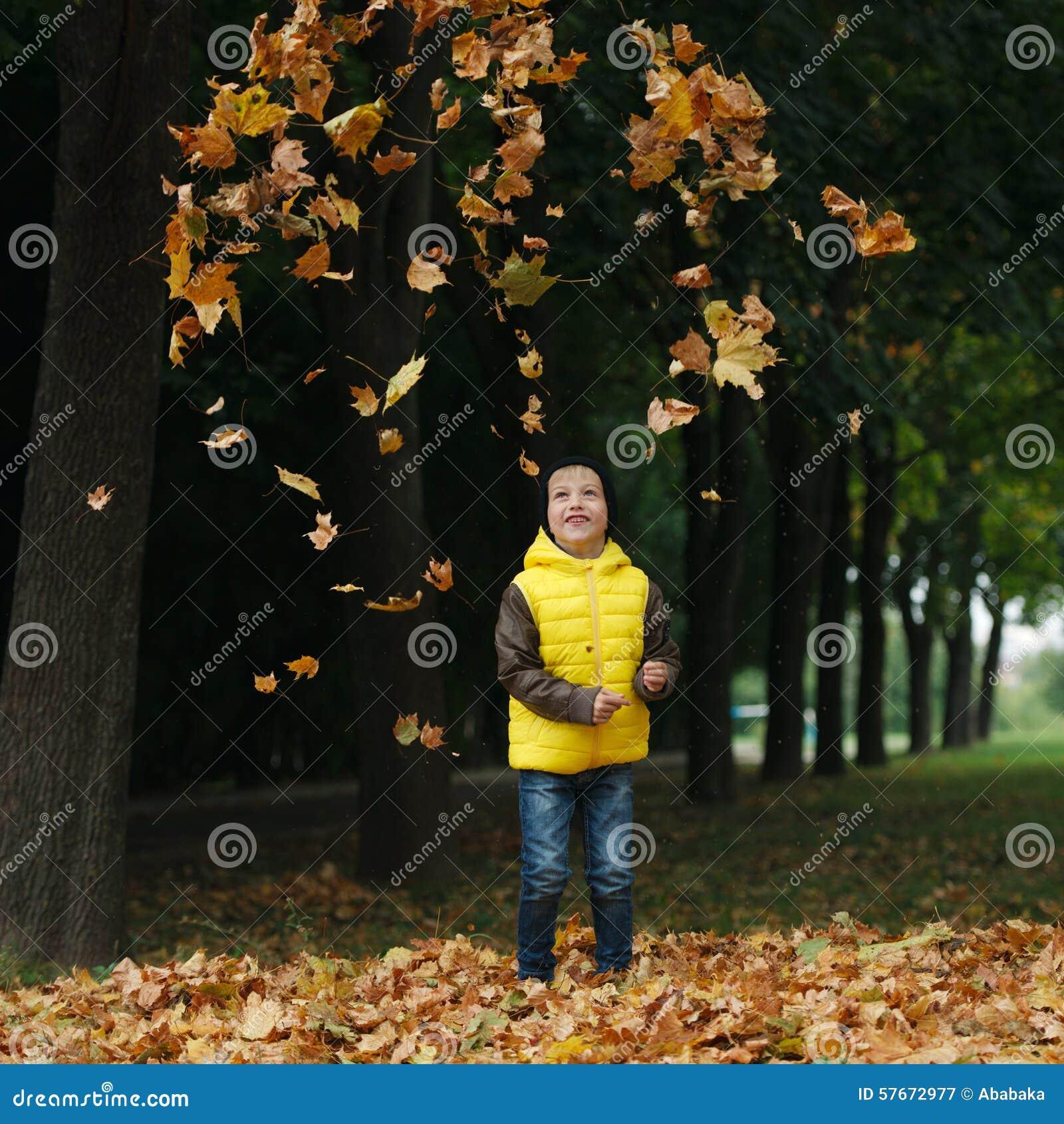 Mała śmieszna chłopiec w jesień liści portrecie