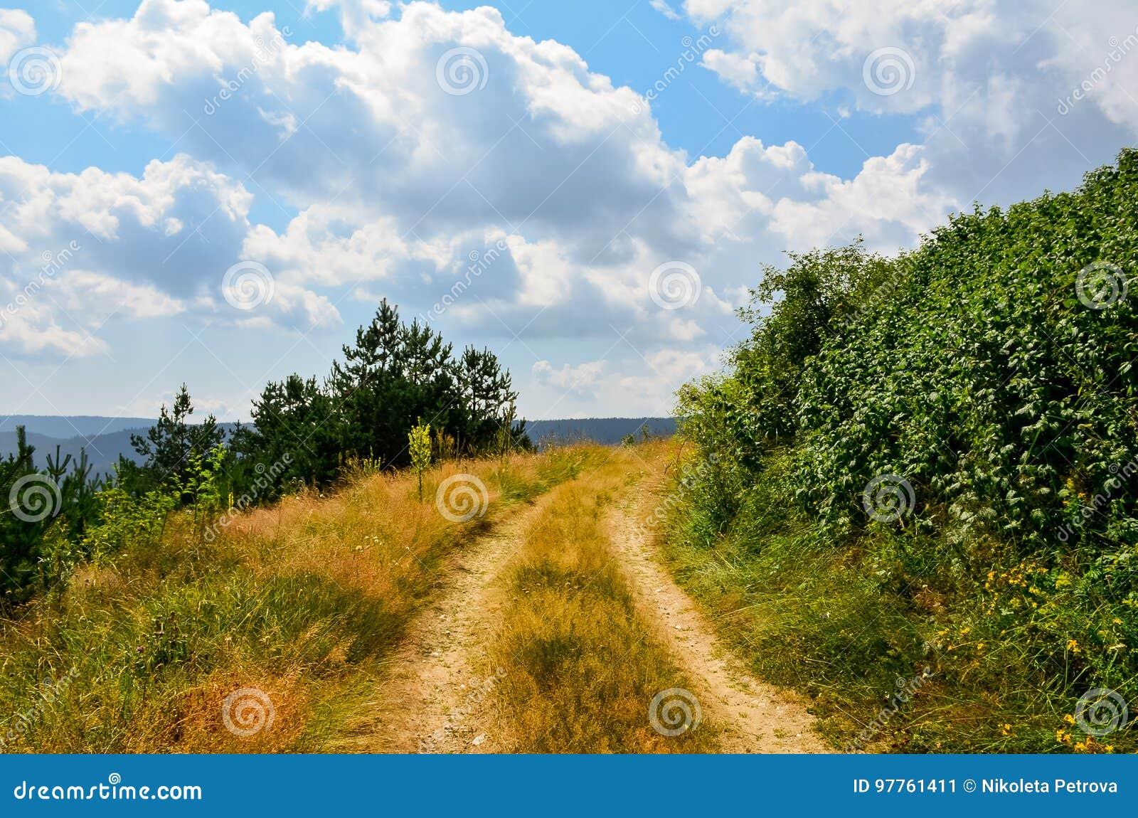 Mała droga przemian w naturze