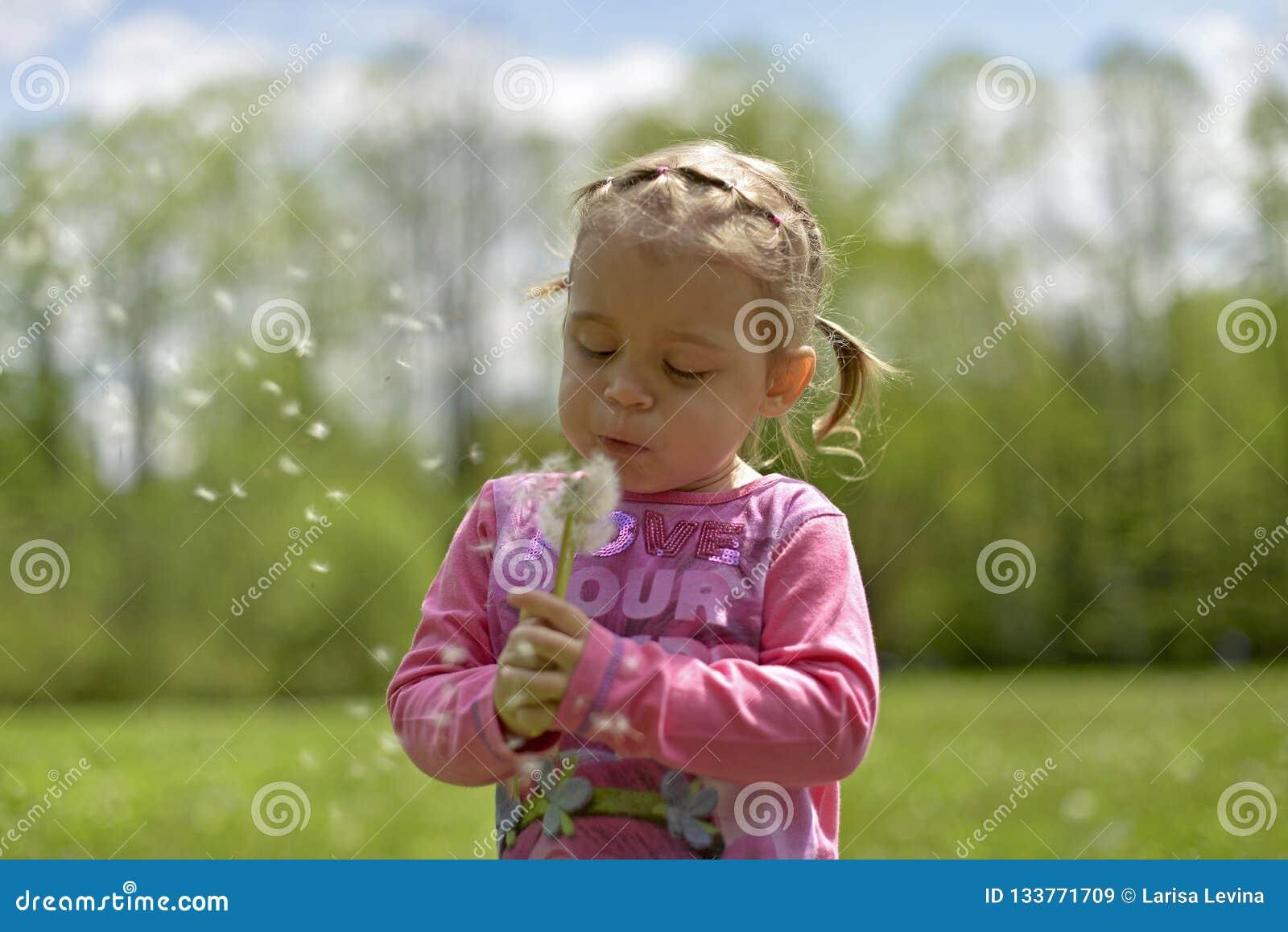Mała dziewczynka dmucha mocno na białym dandelion