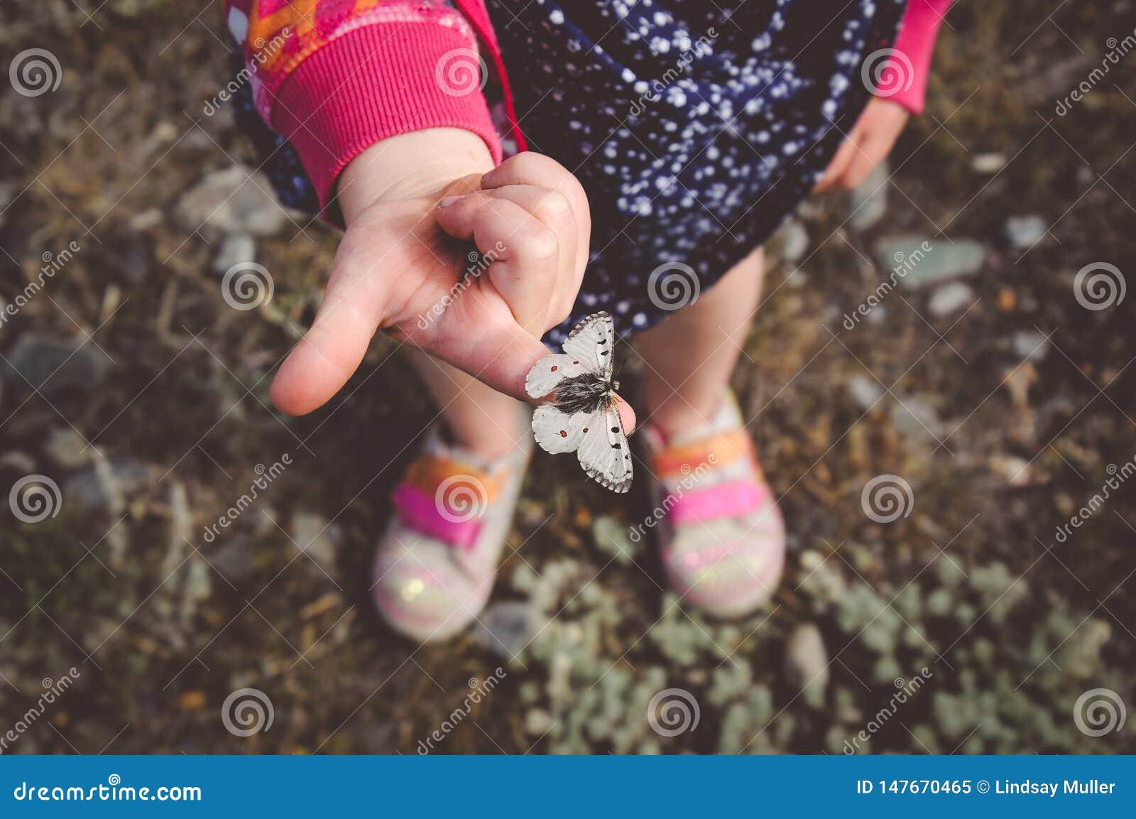 Mała Dziewczynka Trzyma Białego motyla