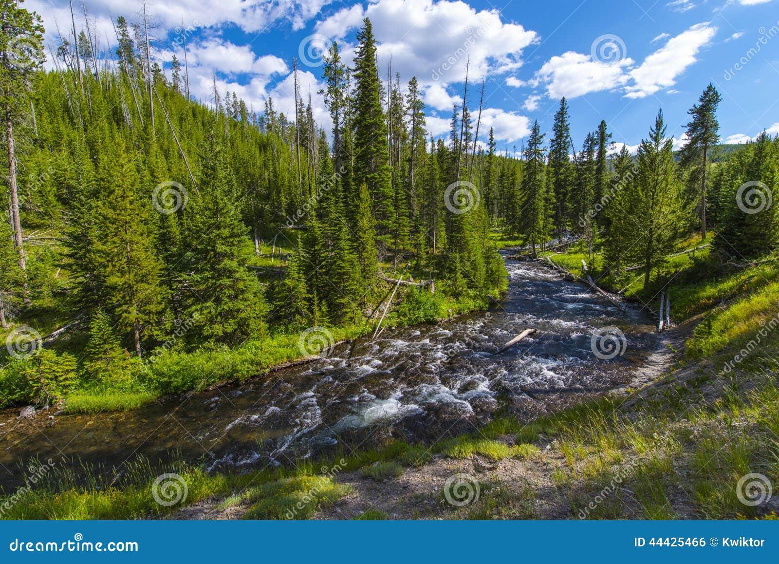 Mała Firehole rzeka blisko Tajemniczych spadków