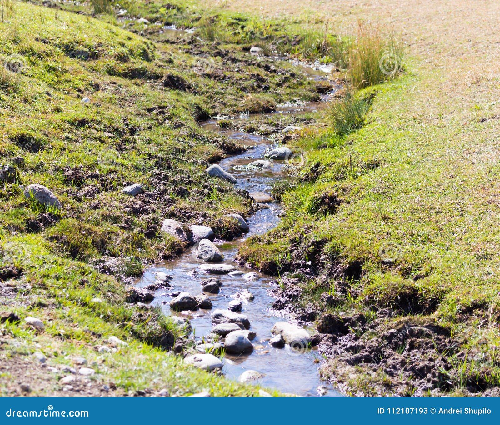 Mała rzeka w naturze