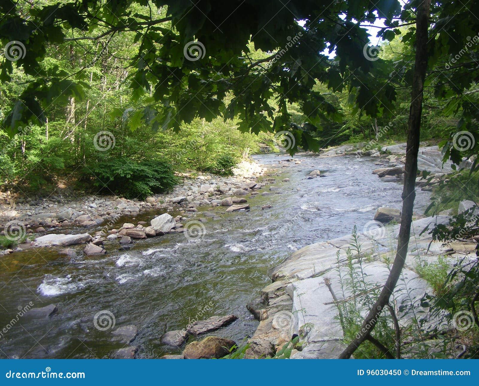 Mała rzeka z skałami
