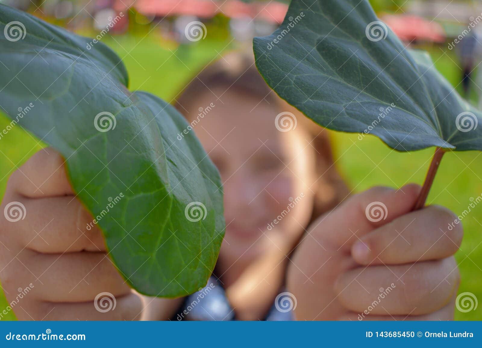 Małej dziewczynki mienia zieleni liście