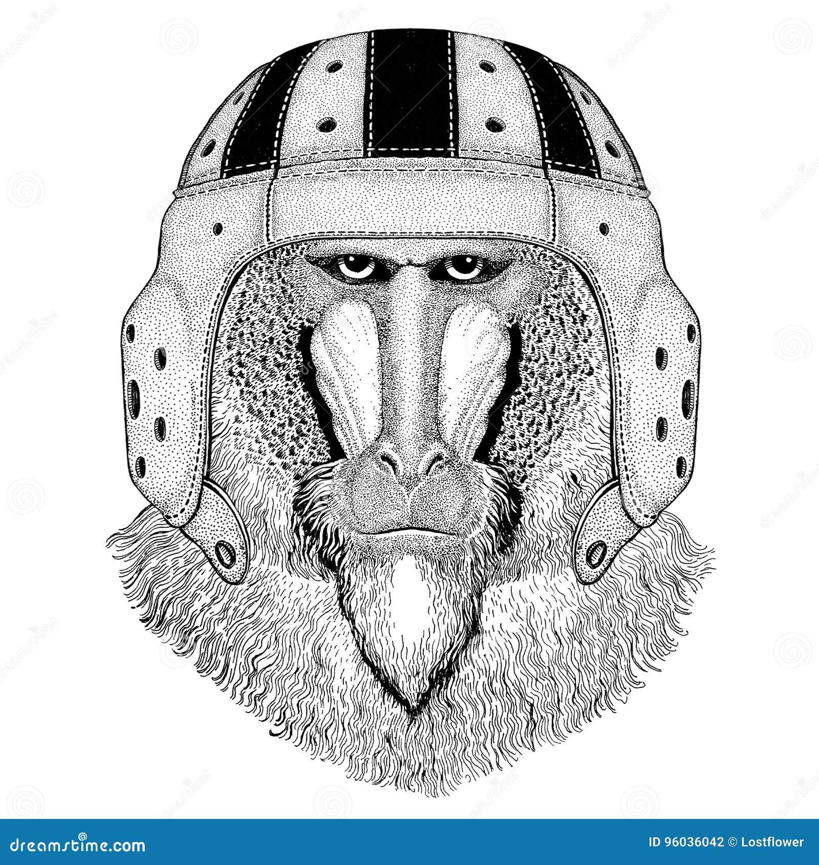 Małpa, pawian, małpa, małpy dzikie zwierzę jest ubranym rugby hełma sporta ilustrację