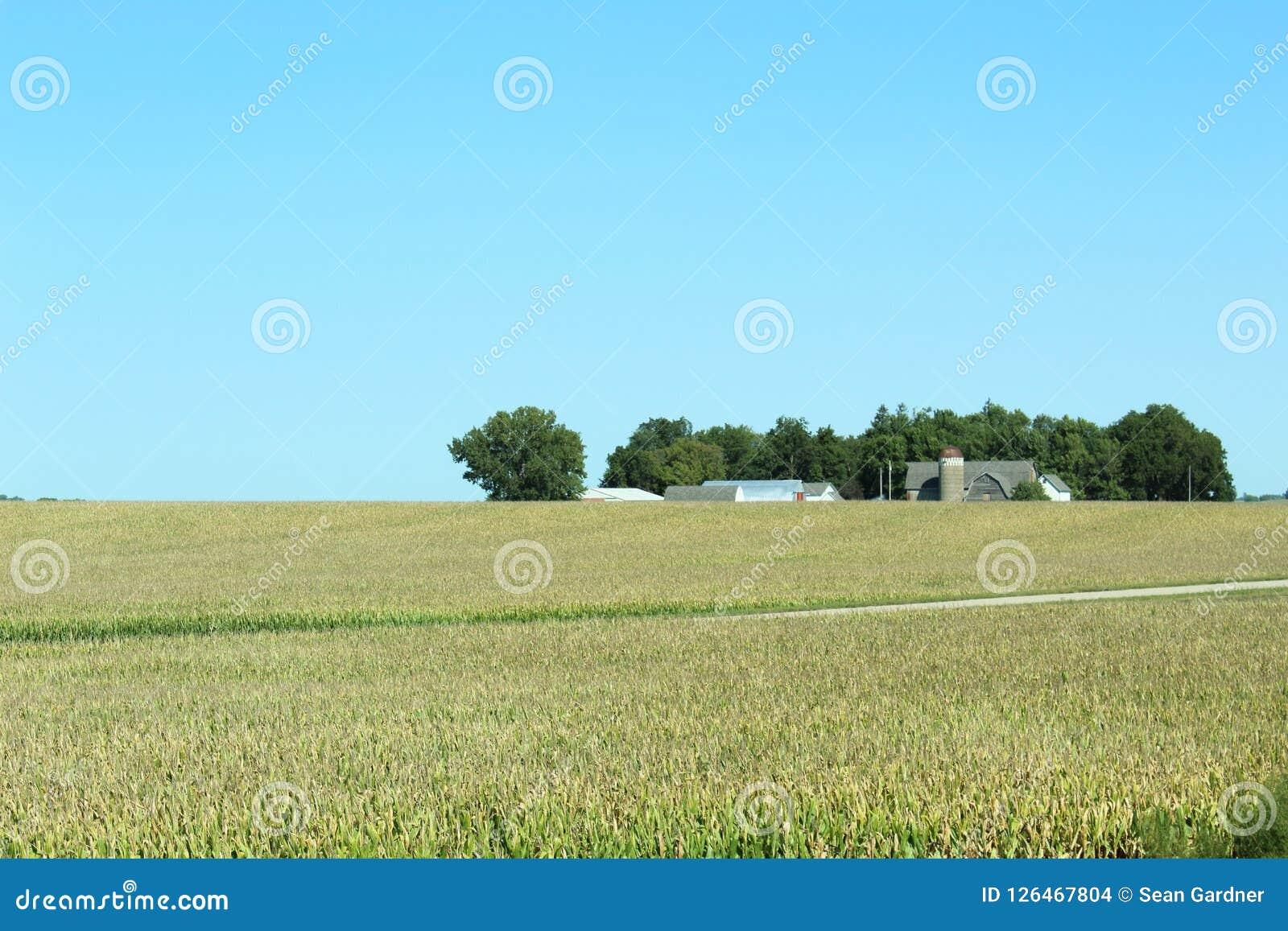 Mały gospodarstwo rolne dom i stajnia z silosem