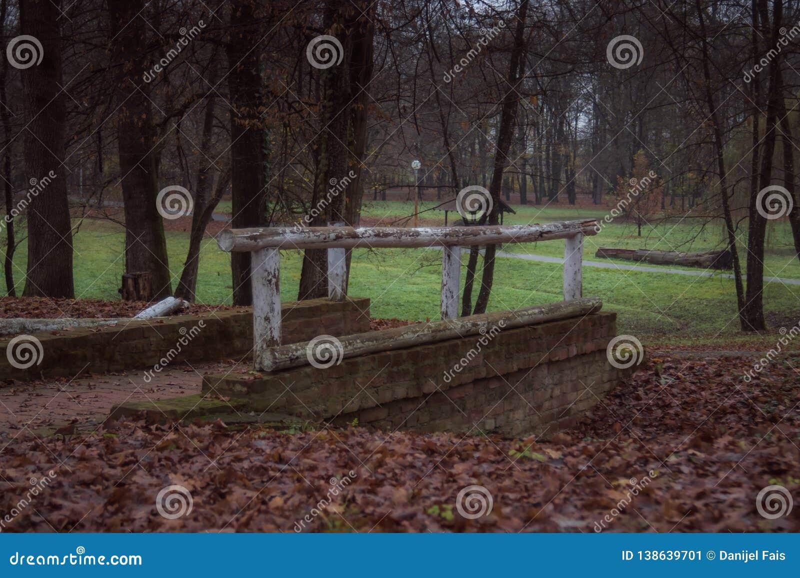 Mały most w parku podczas jesieni