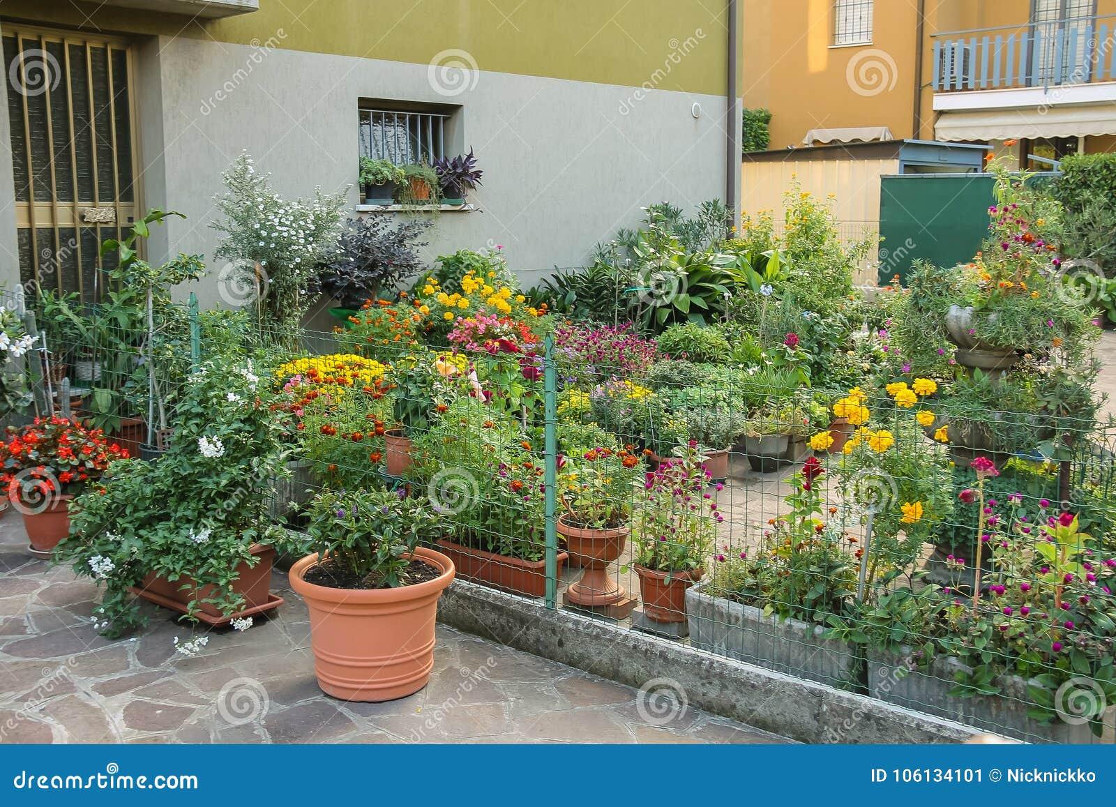 Mały ornamentacyjny ogród z kwiatów garnkami