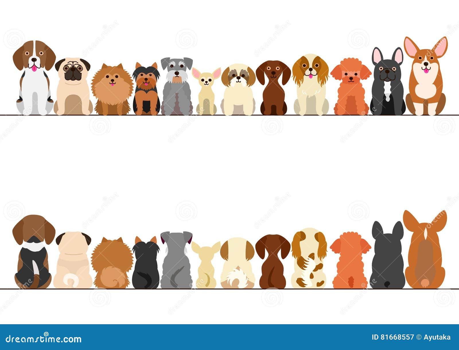 Mały pies granicy set