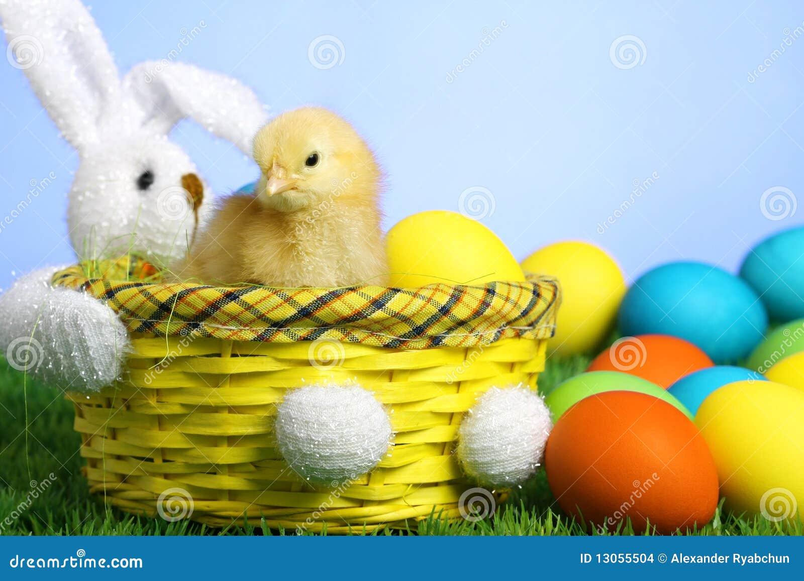 Mały pisklęcy Easter