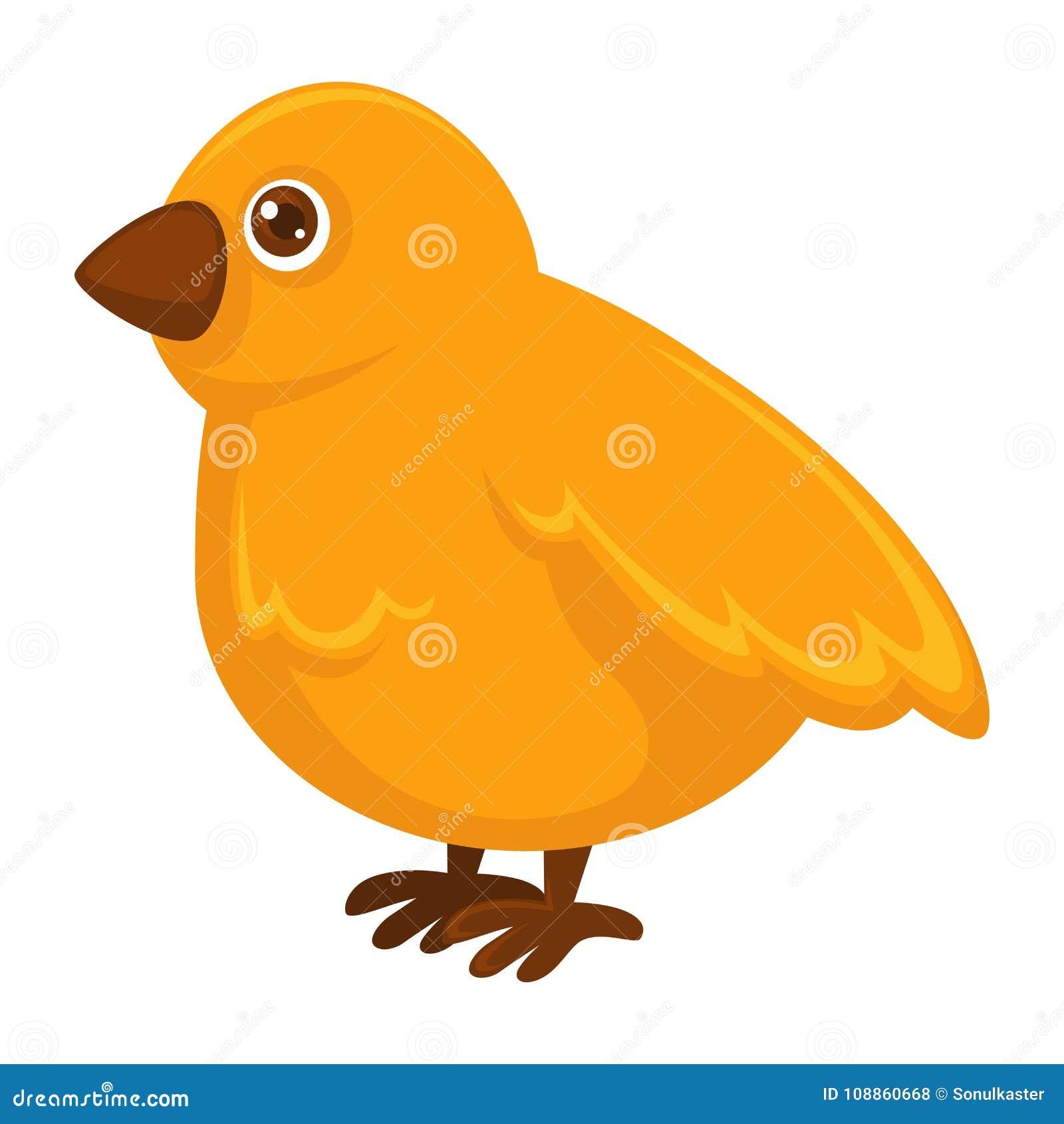 Mały puszysty żółty kurczak z małym ostrym belfrem
