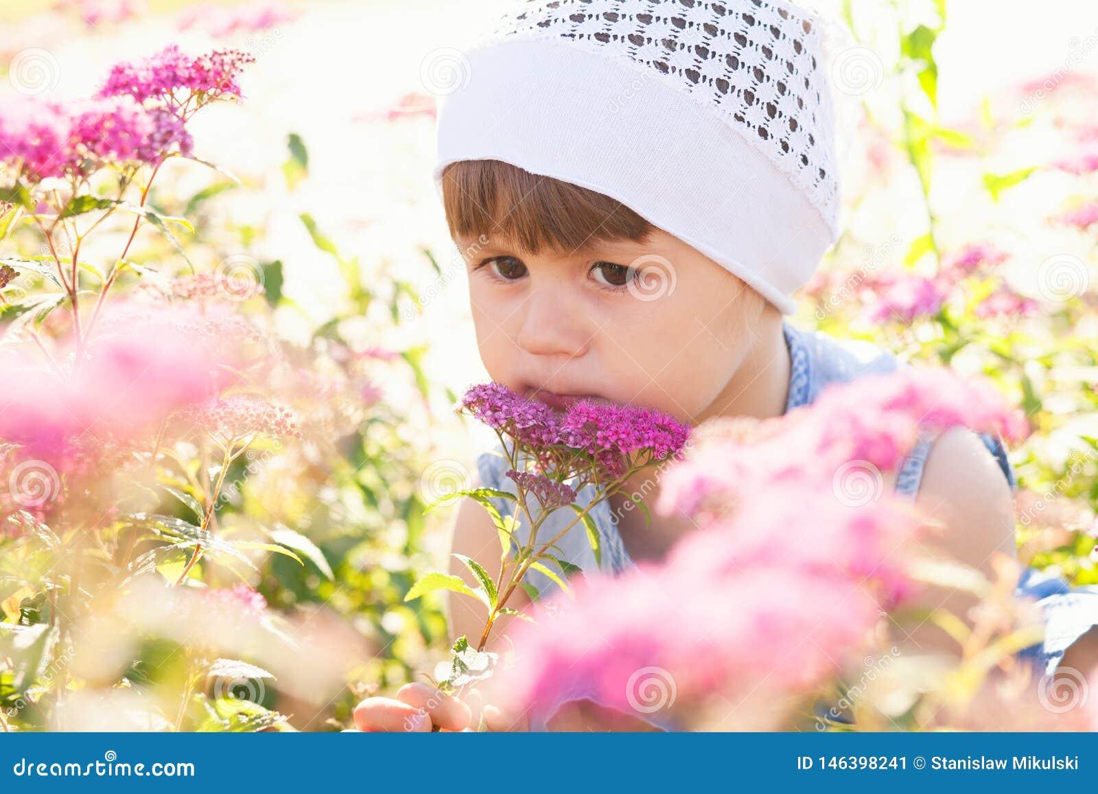Ma?a dziewczynka w polu kwiaty