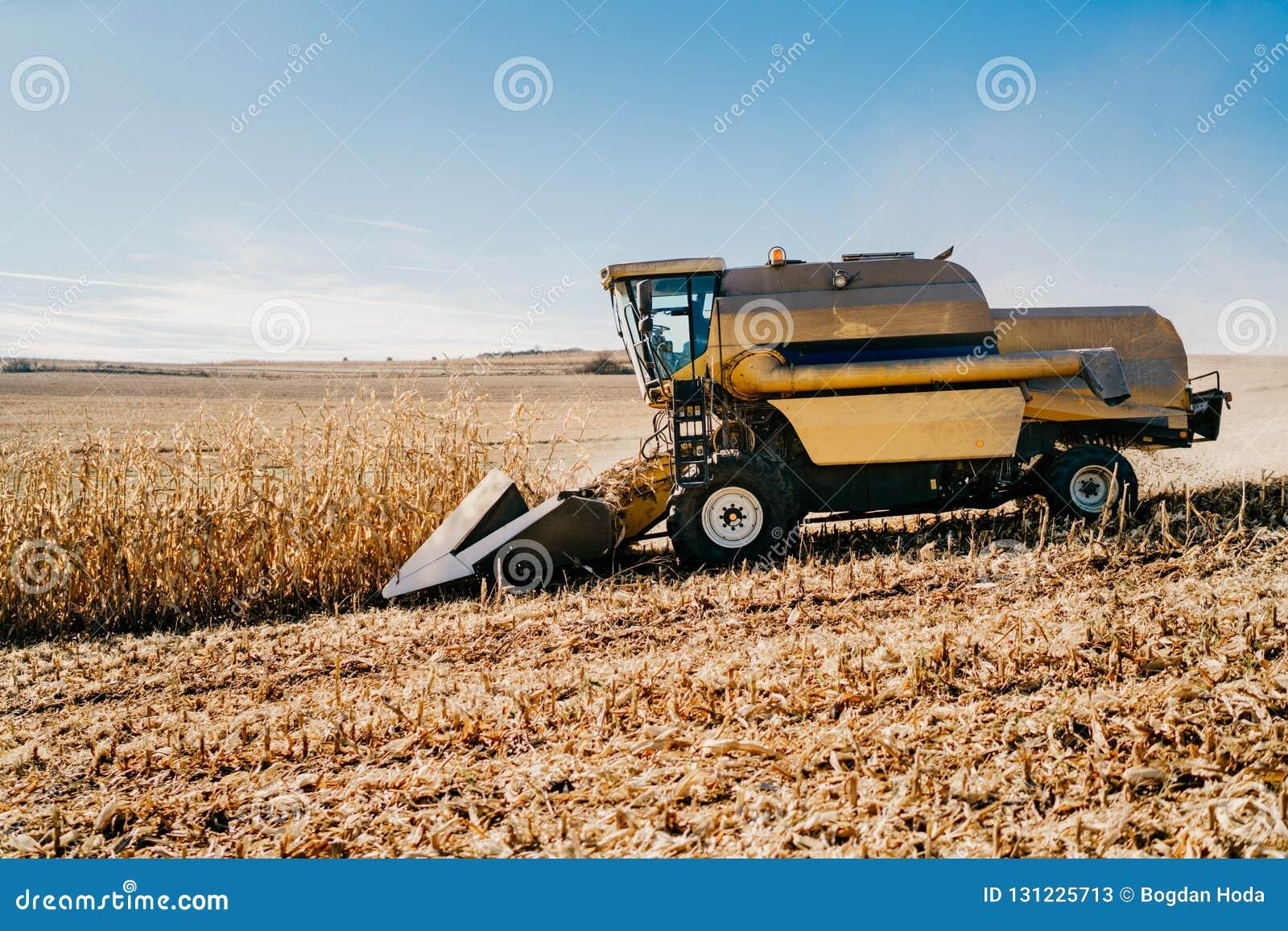 Maaidorser die op de gebieden werken Landbouwlandbouwer die met machines werken