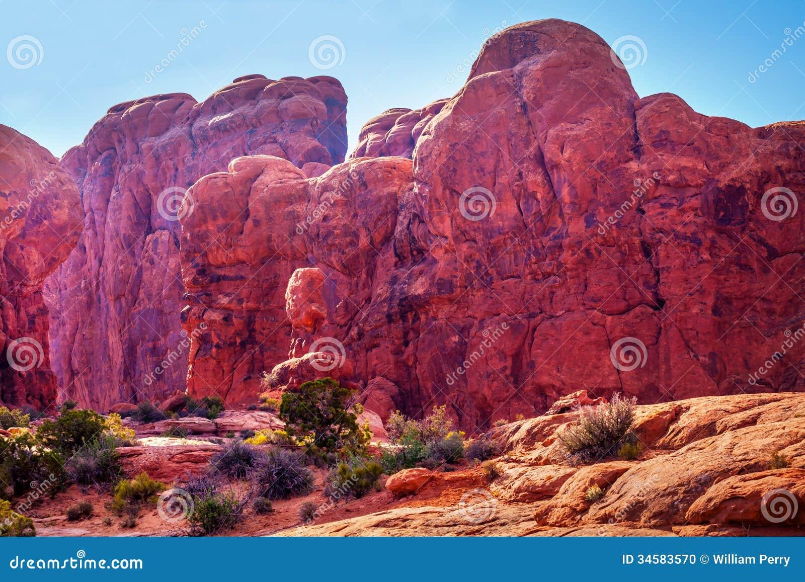 Maart Van Olifantentuin Van Eden Arches National Park Moab Utah Stock Foto Afbeelding