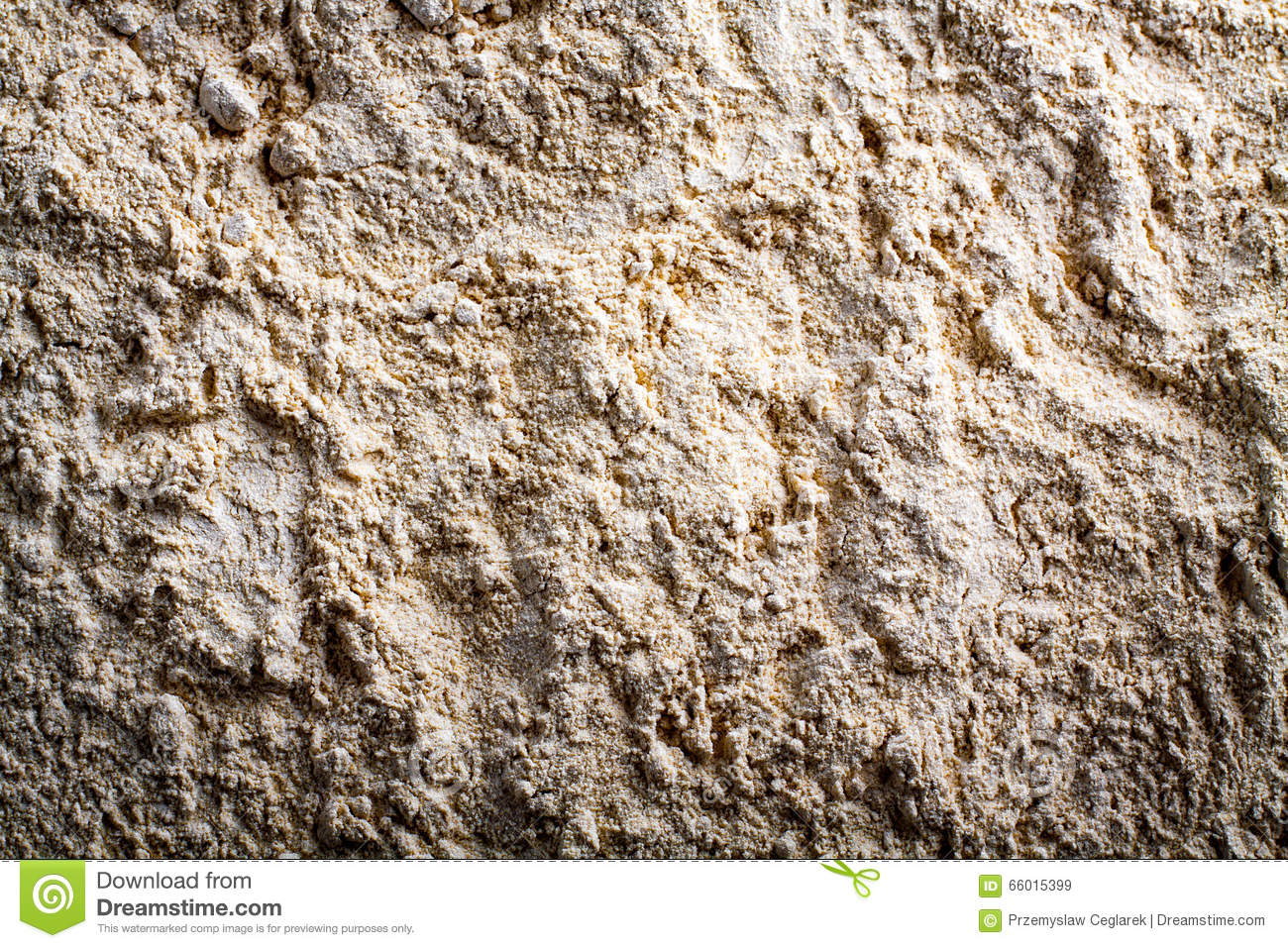 maca background stock image. image of peruvian, plant - 66015399