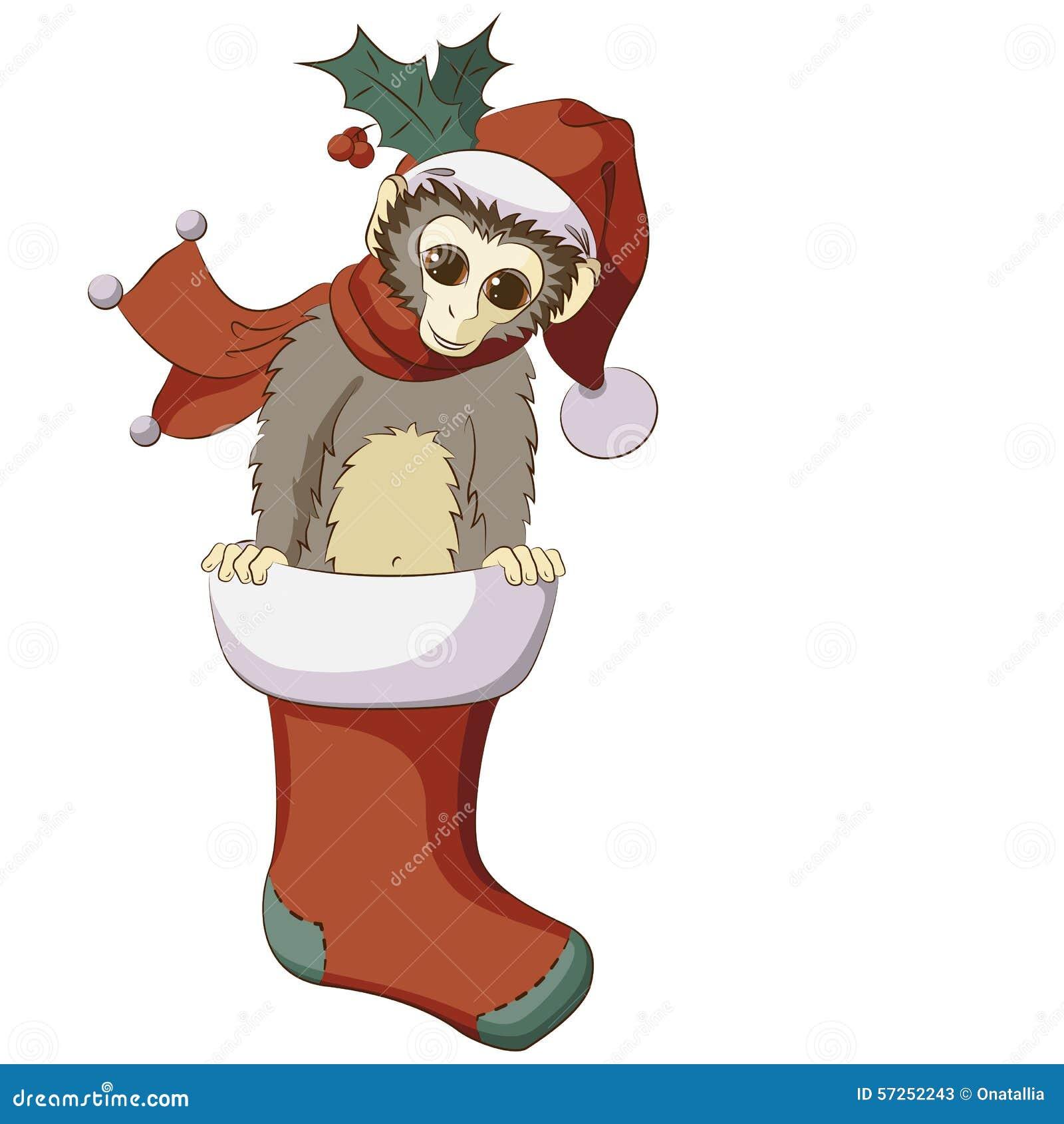 Macaco pequeno estalando para fora da meia do Natal