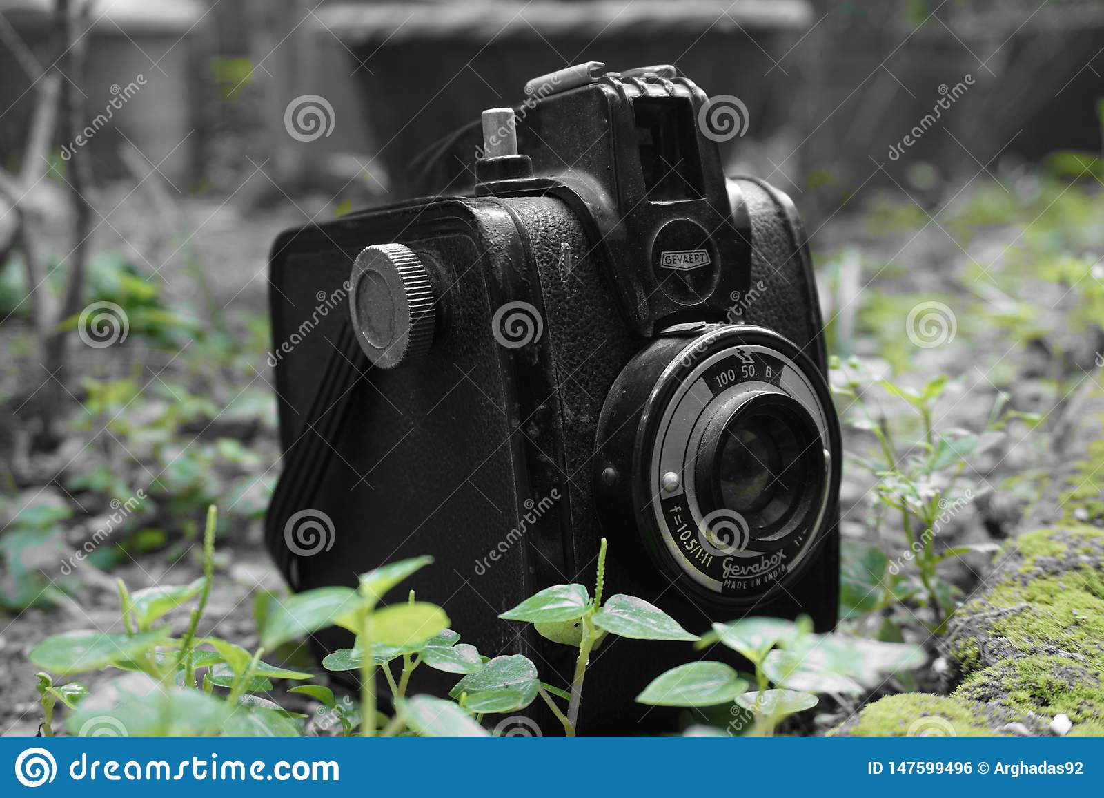 Macchina fotografica d annata di Gevabox Gevaert