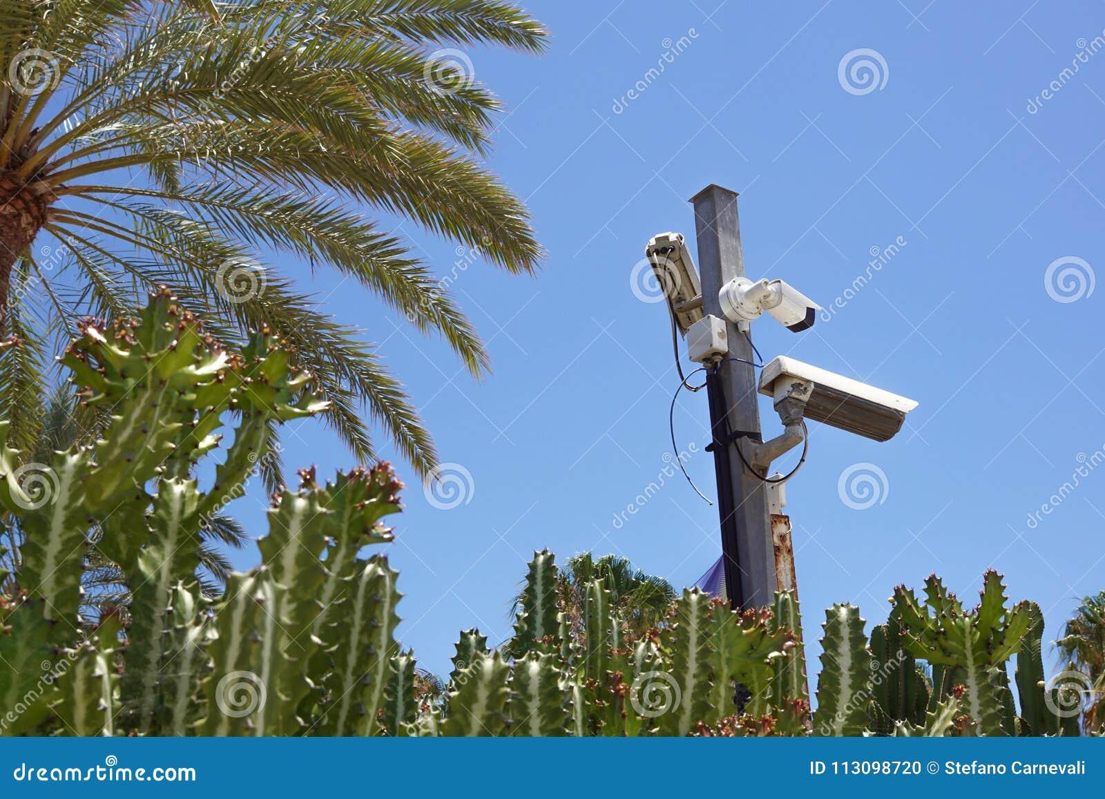 Macchina fotografica del CCTV Videocamera di sicurezza sulla parete Protezione della proprietà privata