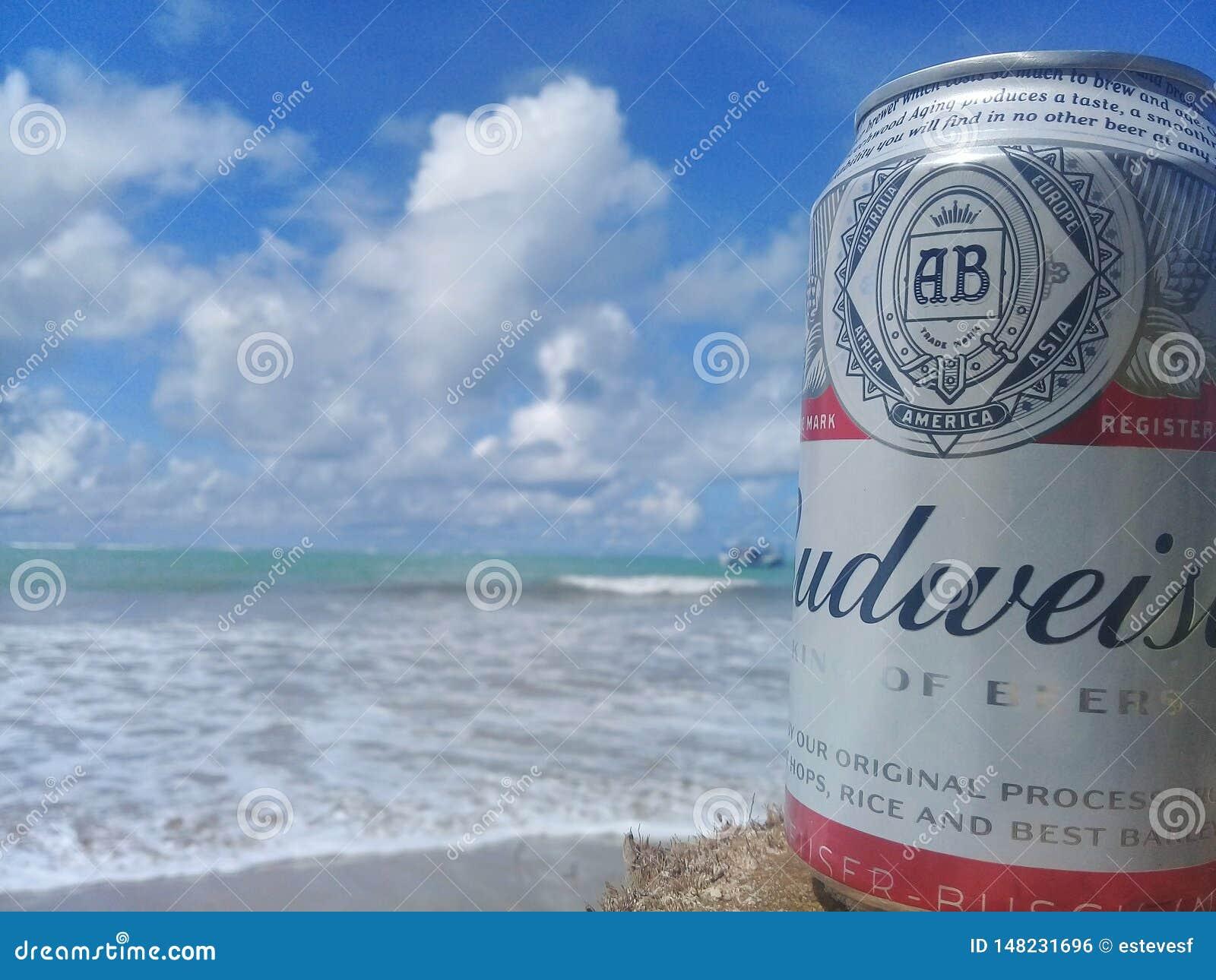 MACEIO, AL, БРАЗИЛИЯ - 12-ое мая 2019: Пиво Budweiser холодное и красивые небо и море позади