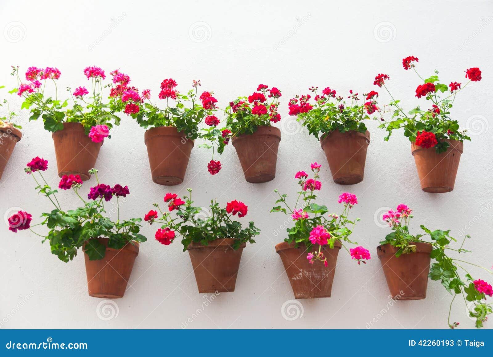 Macetas y flor roja en una pared blanca con el espacio de - Macetas para pared ...