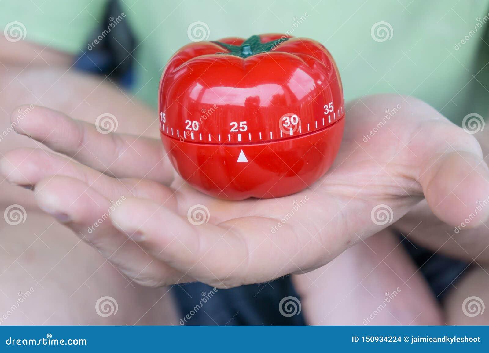 Machinalny czerwony pomidorowy kuchenny zegar ustawiający 25 jeden otwartą ręką, trzymający