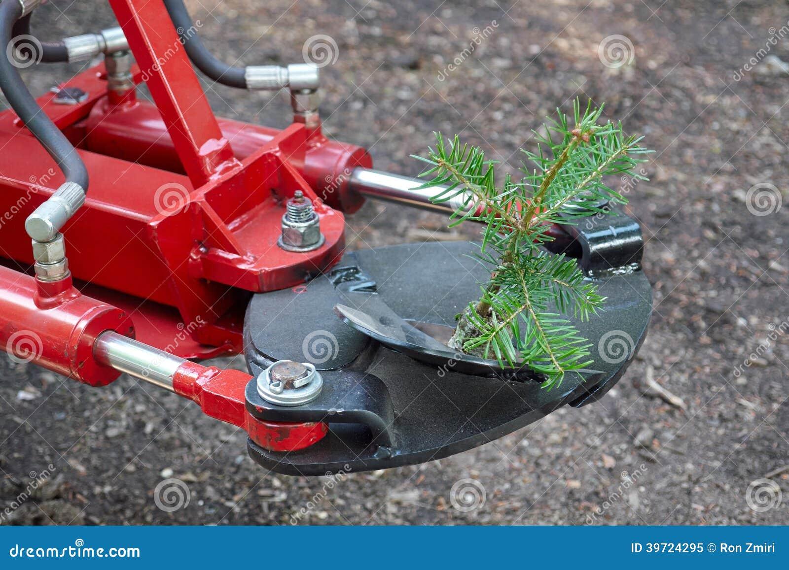 Machine de plantation d 39 arbres photo stock image 39724295 - Plantation d arbres synonyme ...
