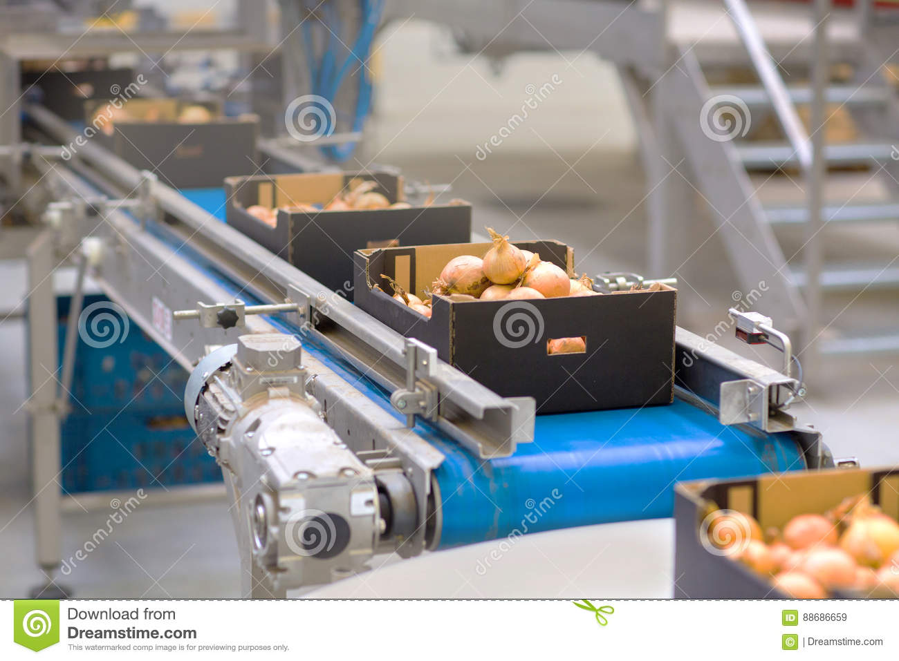 The machine in the food industry
