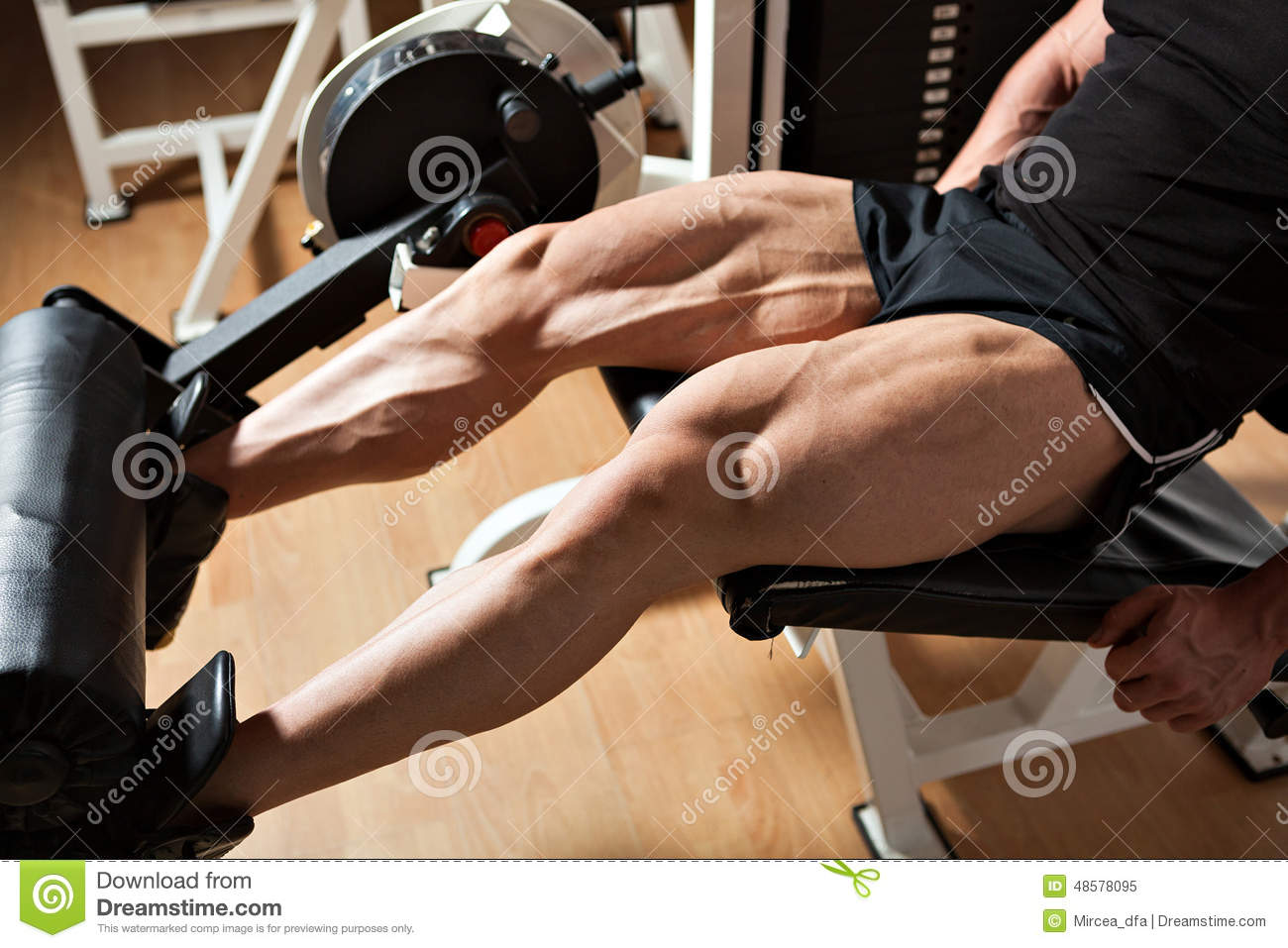 Machine Leg Extensions Stock Image Image Of Perfect 48578095