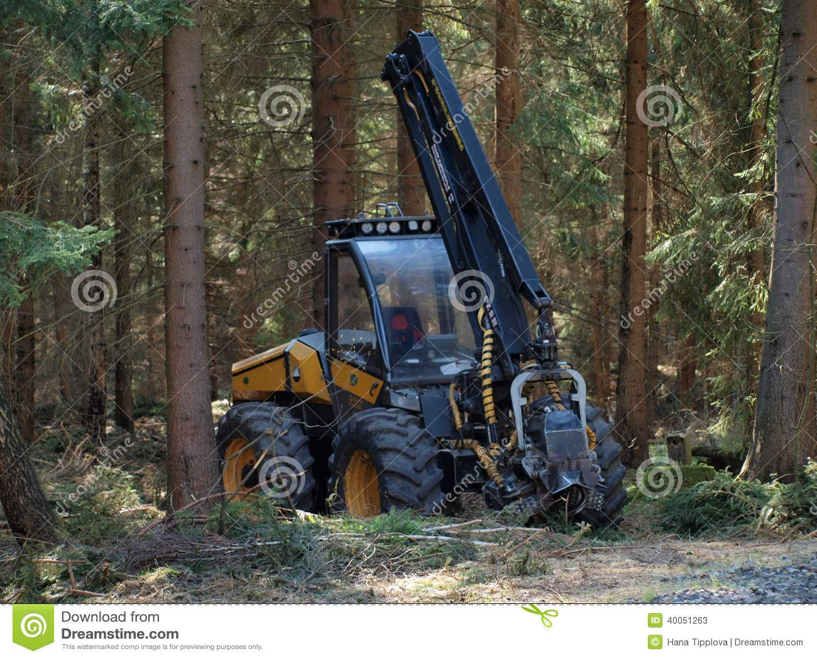 Machine logging, South Bohemia