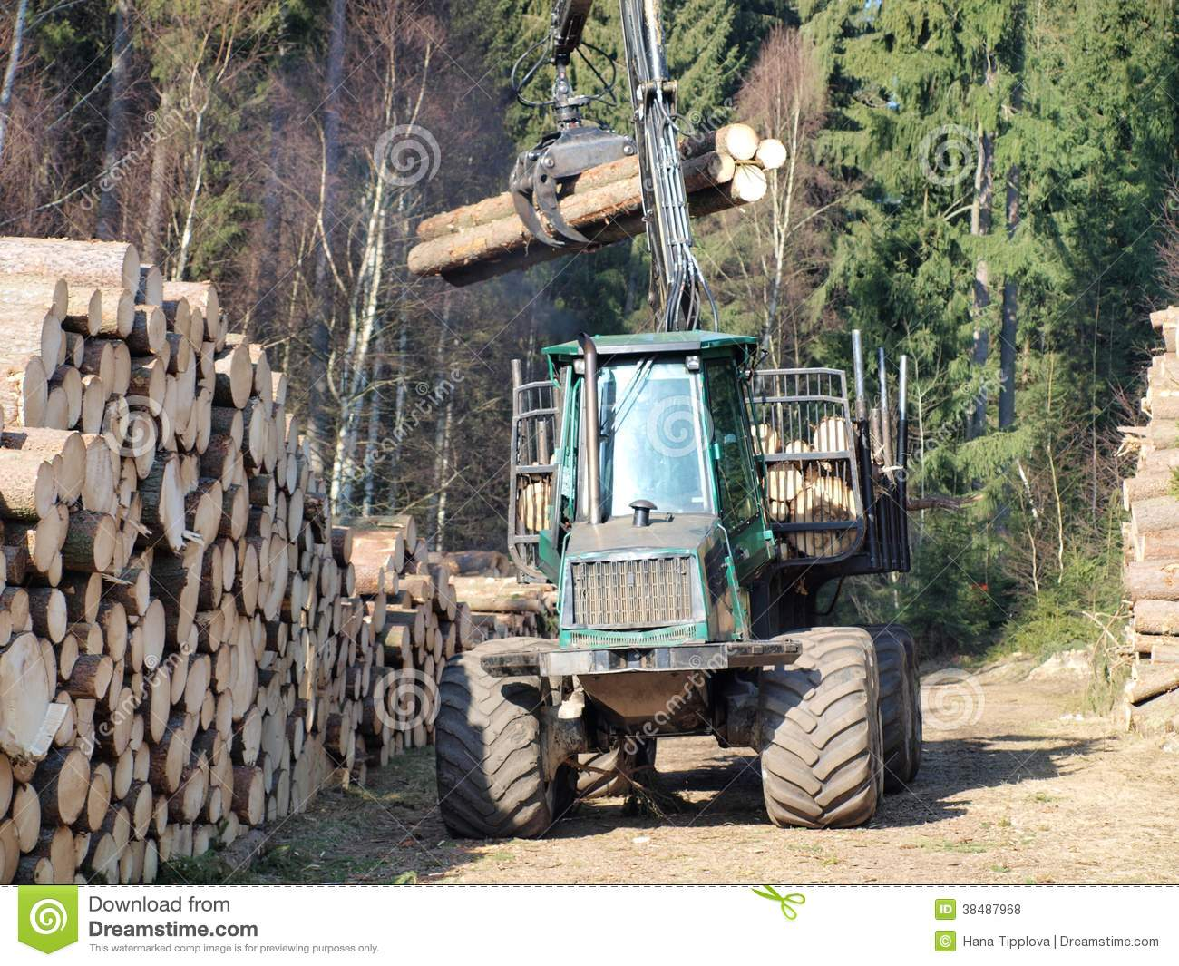 Machine for wood transport